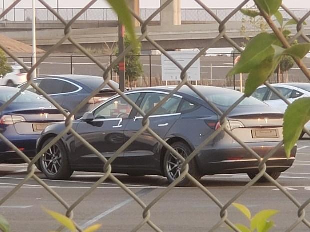 Обновленная Tesla Model 3 попалась на фото